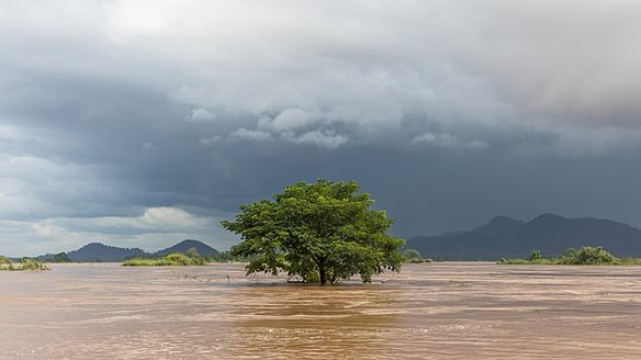 640px-submerged_tree_under_a_dark_sky_in_si_phan_don